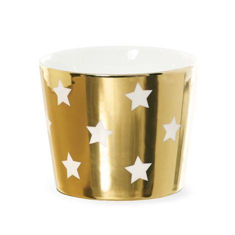 Miss Étoile Schale Stars Gold/Weiß •
