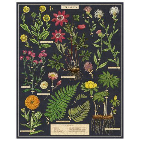 Cavallini Puzzle Herbarium 1000-teilig