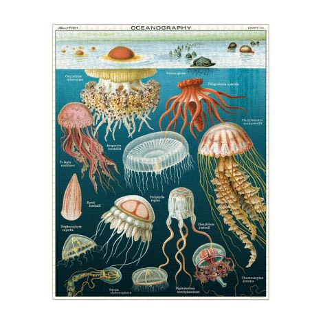Cavallini Puzzle Jellyfish 1000-teilig