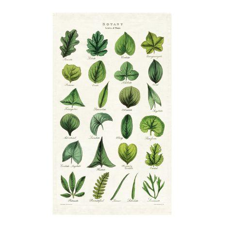 Cavallini Geschirrtuch Botany Leaves •