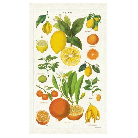Cavallini Geschirrtuch Citrus