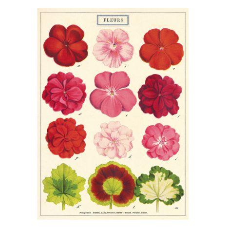 Cavallini Poster Fleurs •