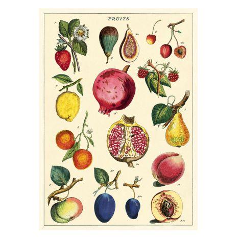 Cavallini Poster Fruit