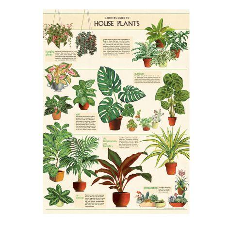 Cavallini Poster House Plants