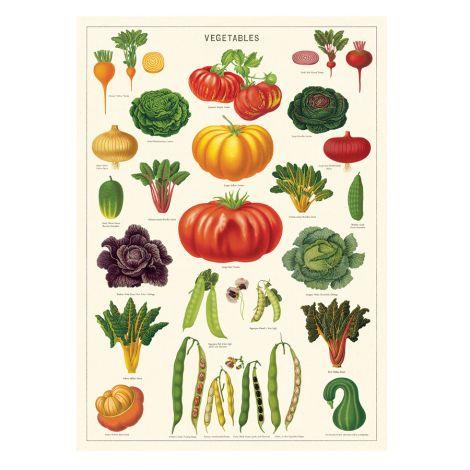 Cavallini Poster Vegetable Garden •
