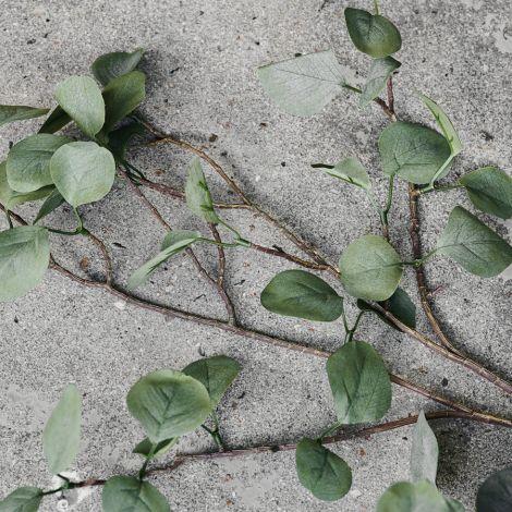 House Doctor Deko-Pflanze Eucalyptus Natur