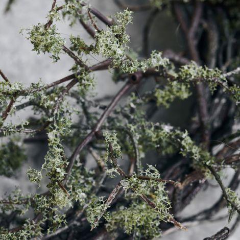 House Doctor Deko-Kranz Wild Moss Natur