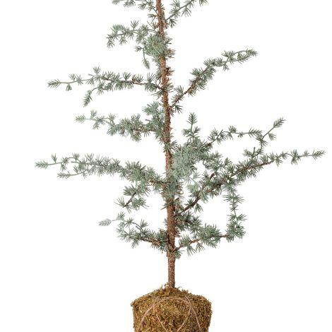 Bloomingville Deko-Baum aus Kunststoff