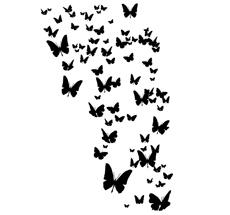 Poetic Wall Wandtattoo Alle Schmetterlinge
