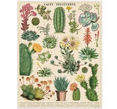 Cavallini Puzzle Cacti & Succulents 1000-teilig